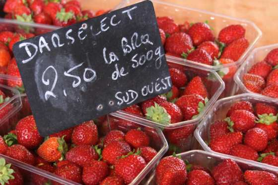 strawberries darselect