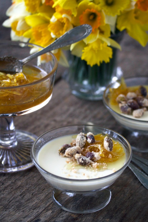 Panna cotta and lemon marmalade