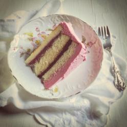Wild blackberry cake